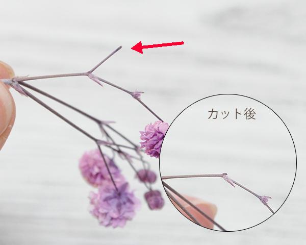 花のない枝をカット